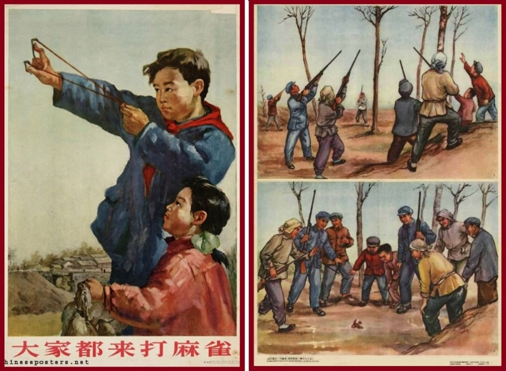 Война с воробьями в Китае